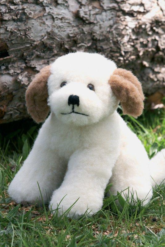 Wolltier Hund